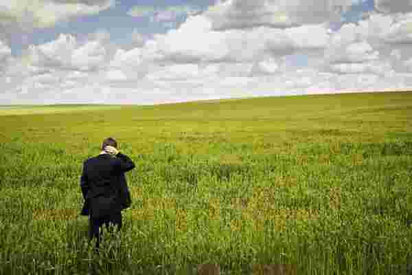 想追求更绿色的牧场?企业家在冒险之前应该问自己的3个问题